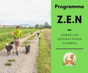 Programme Z.E.N.